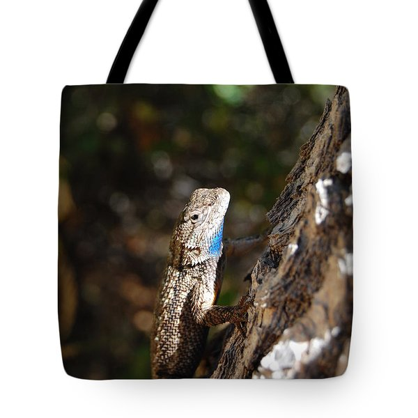 Tote Bag featuring the photograph Blue Throated Lizard 4 by Debra Thompson