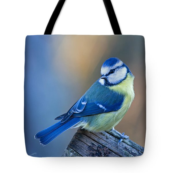 Blue Tit Looking Behind Tote Bag by Torbjorn Swenelius