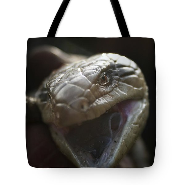 Blue Tongue Lizard Tote Bag by Joy Watson