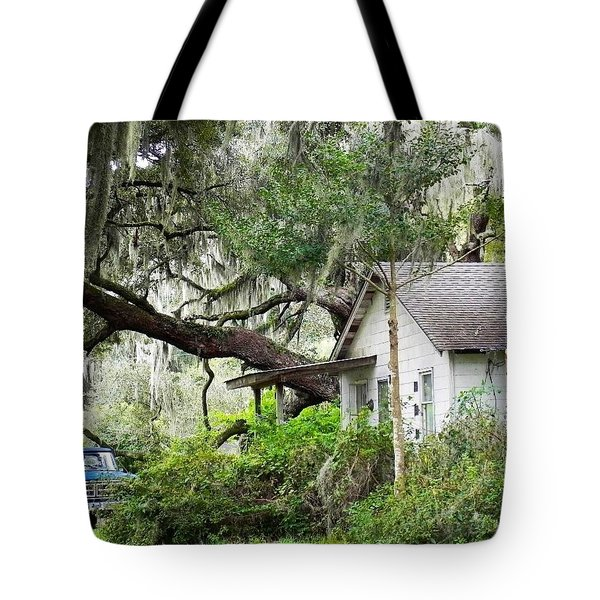 Blue Truck And Moss Tote Bag by Patricia Greer