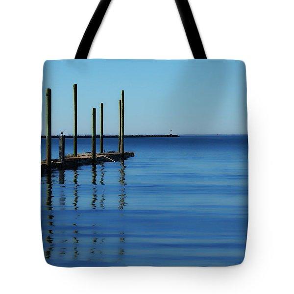 Blue Water Tote Bag by Karol Livote