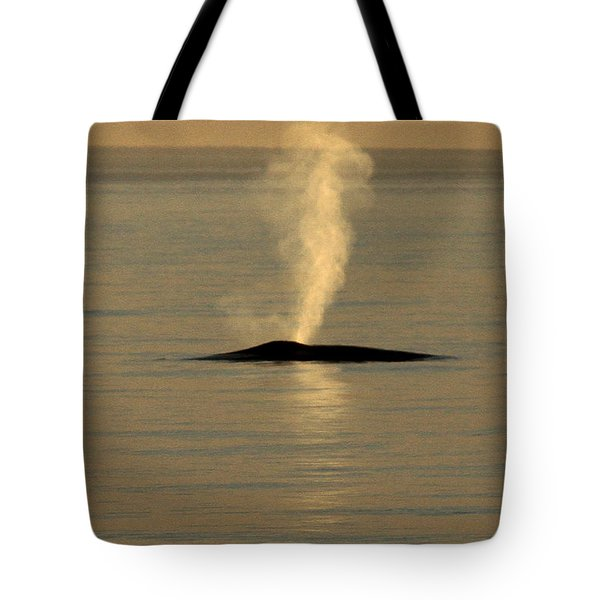 Tote Bag featuring the photograph Blue Whale At Sunset In Monterey Bay California  2013 by California Views Mr Pat Hathaway Archives