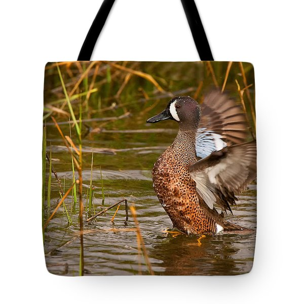 Tote Bag featuring the photograph Blue-winged Teal by Ram Vasudev
