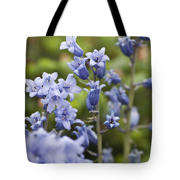 Bluebells 2 Tote Bag by Steve Purnell