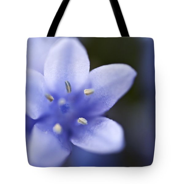 Bluebells 4 Tote Bag by Steve Purnell