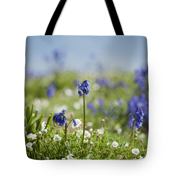 Bluebells In Sea Campion Tote Bag by Anne Gilbert