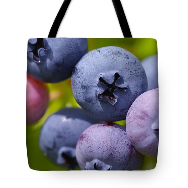 Blueberries Tote Bag by Sharon Talson