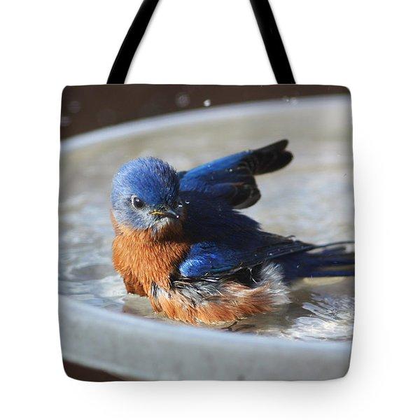 Bluebird Bath Tote Bag