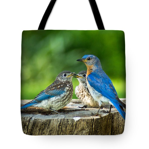 Bluebird - Father And Sons Tote Bag