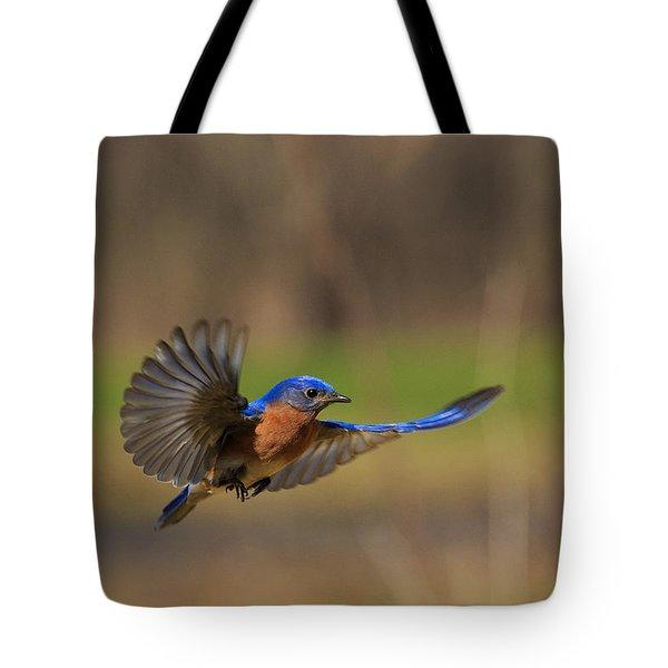 Bluebird In Flight Tote Bag