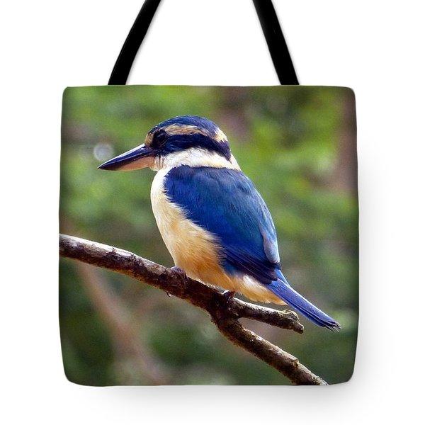 Bluebird In Suva Fiji Tote Bag by Barbie Corbett-Newmin