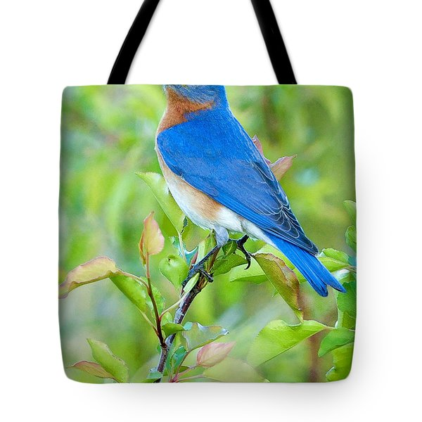 Bluebird Joy Tote Bag by William Jobes