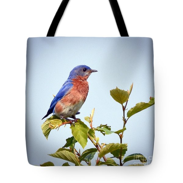 Tote Bag featuring the photograph Bluebird On Top by Kerri Farley
