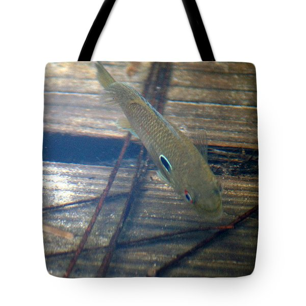 Bluegill On The Hunt Tote Bag