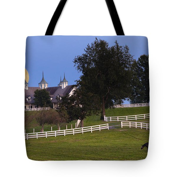 Bluegrass Moonrise Tote Bag