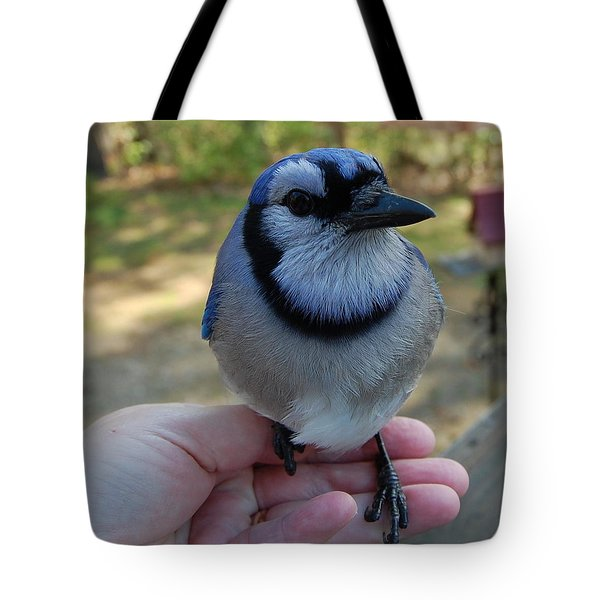 Tote Bag featuring the photograph Bluejay by Mim White