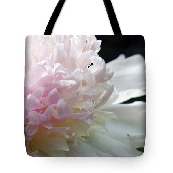 Blushing Peony  Tote Bag