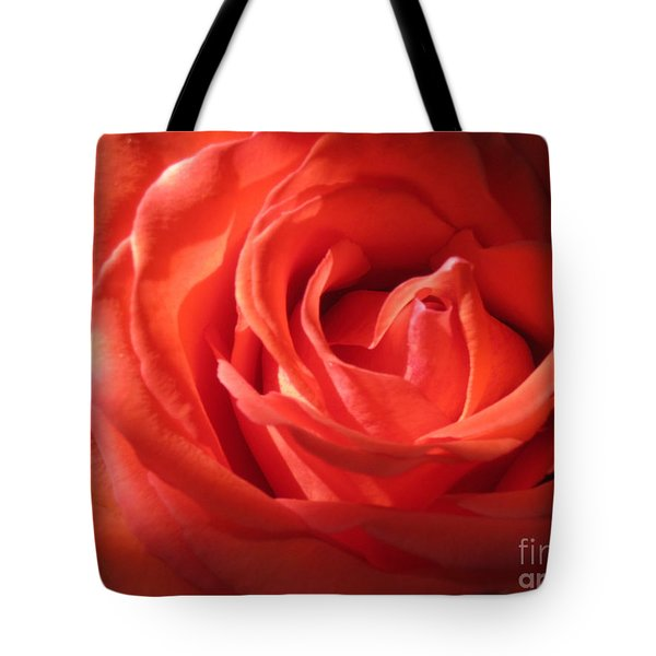 Blushing Orange Rose 1 Tote Bag