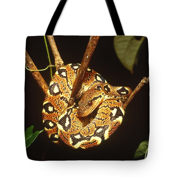 Boa Constrictor Tote Bag by Art Wolfe
