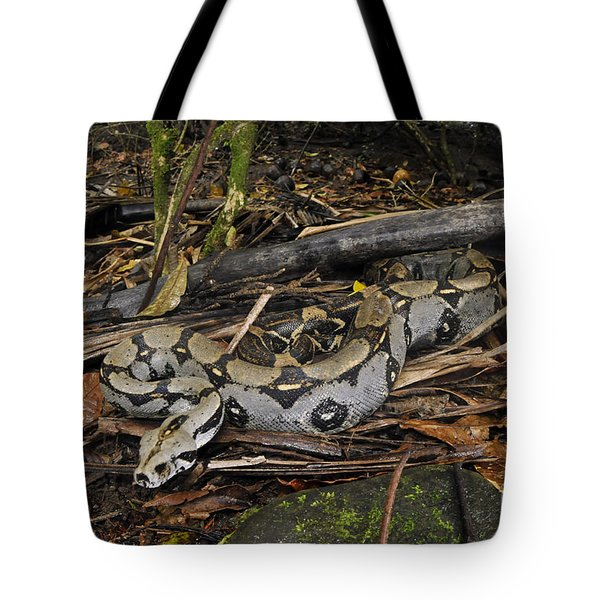 Boa Constrictor Tote Bag by Francesco Tomasinelli
