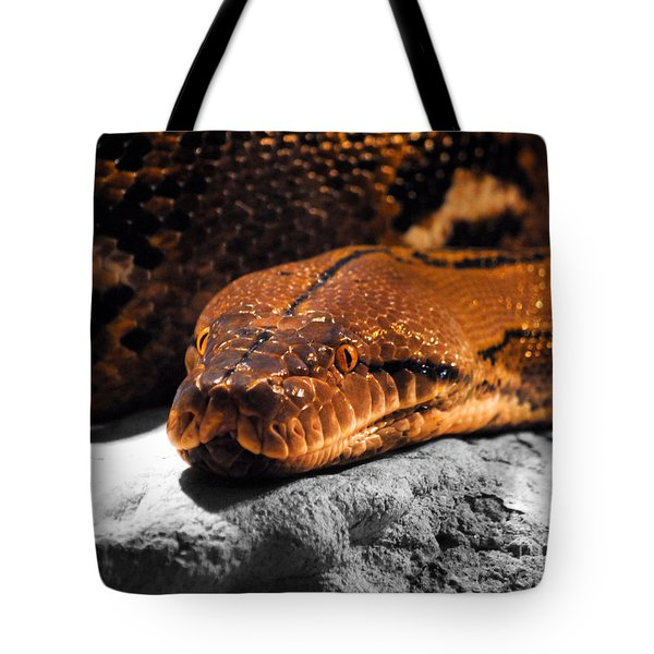 Boa Constrictor Tote Bag by Jai Johnson