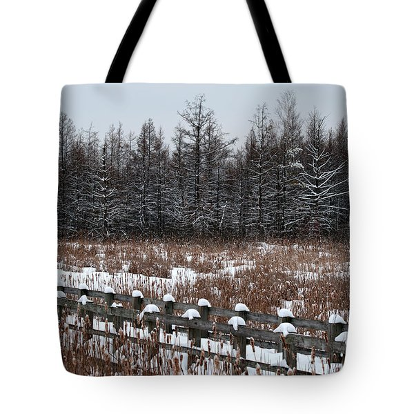 Tote Bag featuring the photograph Boardwalk Series No1 by Bianca Nadeau