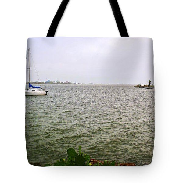 Boat And Catcus Tote Bag