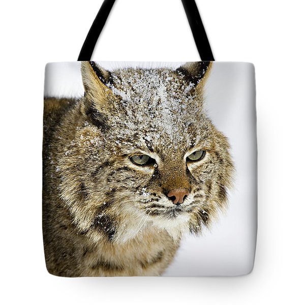 Bob Tote Bag by Jack Milchanowski