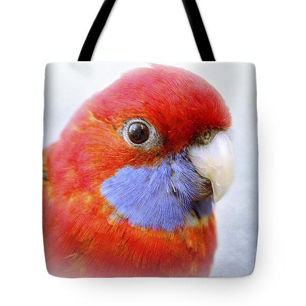 Bobby The Crimson Rosella Tote Bag by Terri Waters