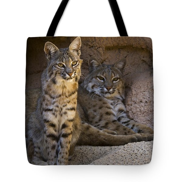 Tote Bag featuring the photograph Bobcat 8 by Arterra Picture Library