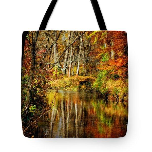 Bob's Creek Tote Bag by Lois Bryan