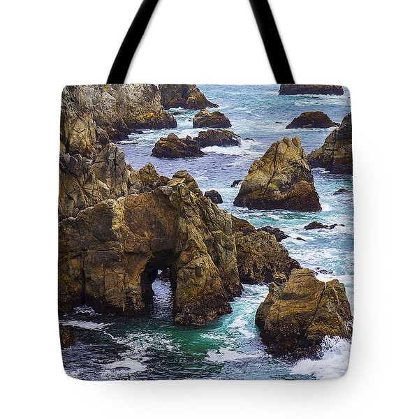 Bodega Head Tote Bag by Garry Gay