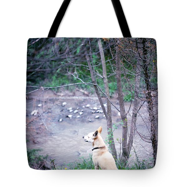 Boggy Watches Tote Bag