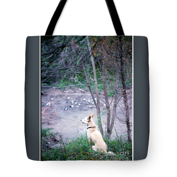 Boggy Watches Tote Bag by Patricia Keller