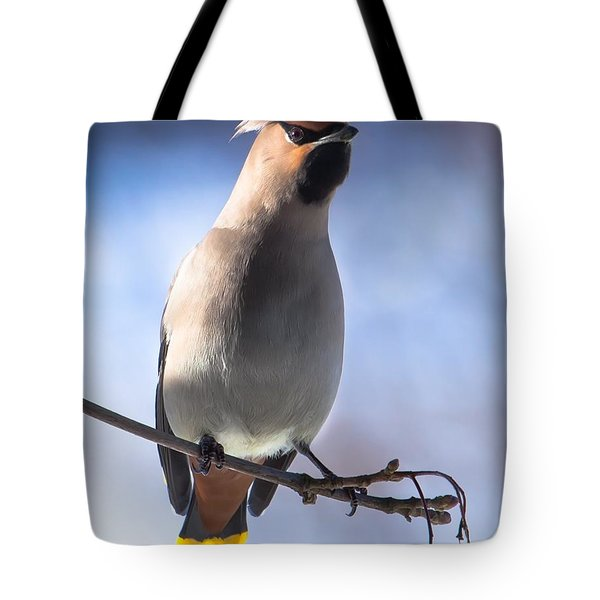 Tote Bag featuring the photograph Bohemian Waxwing Blue by Rose-Maries Pictures