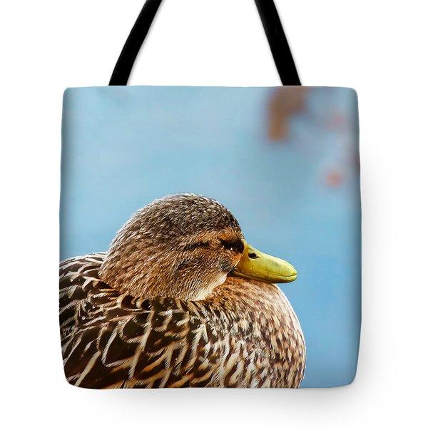 Tote Bag featuring the photograph Bonding In Winter - Female Mallard Duck - Diptych Part 2 by Menega Sabidussi