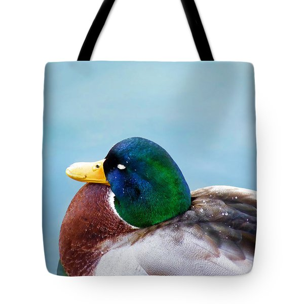 Tote Bag featuring the photograph Bonding In Winter - Male Mallard Duck - Diptych Part 1 by Menega Sabidussi