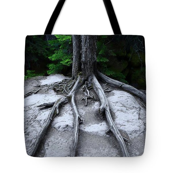 Tote Bag featuring the photograph Bones by David Andersen