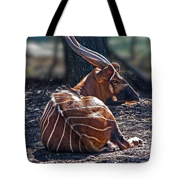 Bongo Tote Bag