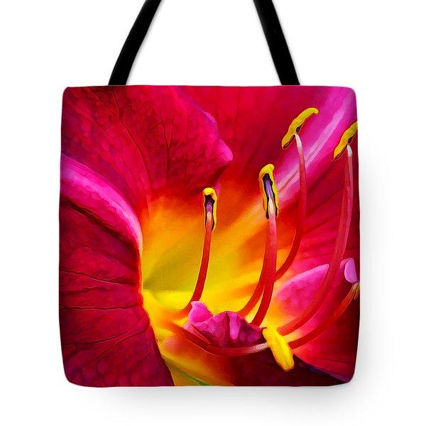Boothbay Burgundy Tote Bag