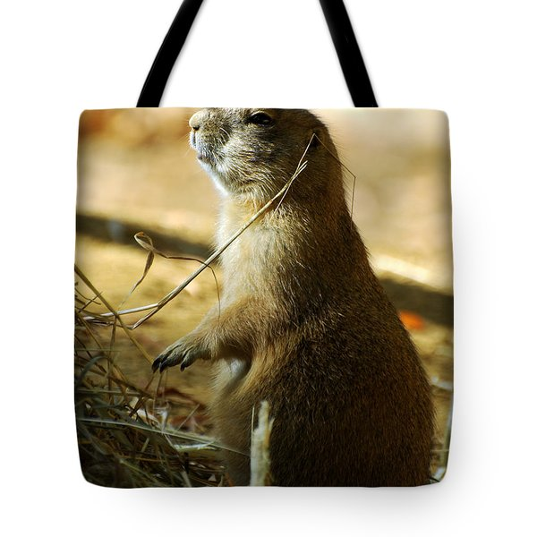 Born On The Prairie Tote Bag