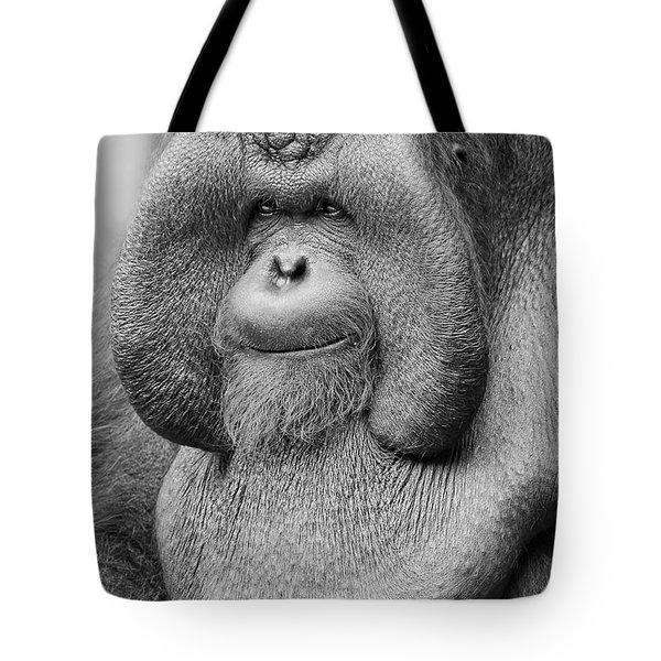 Bornean Orangutan IIi Tote Bag