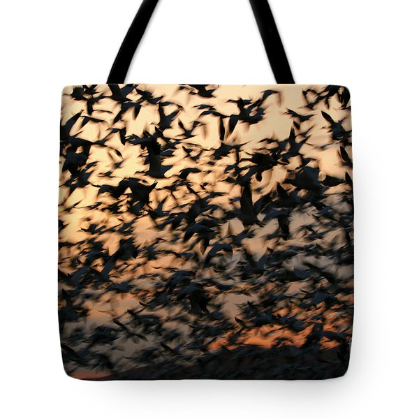 Tote Bag featuring the photograph Bosque Sunrise Blastoff by John F Tsumas