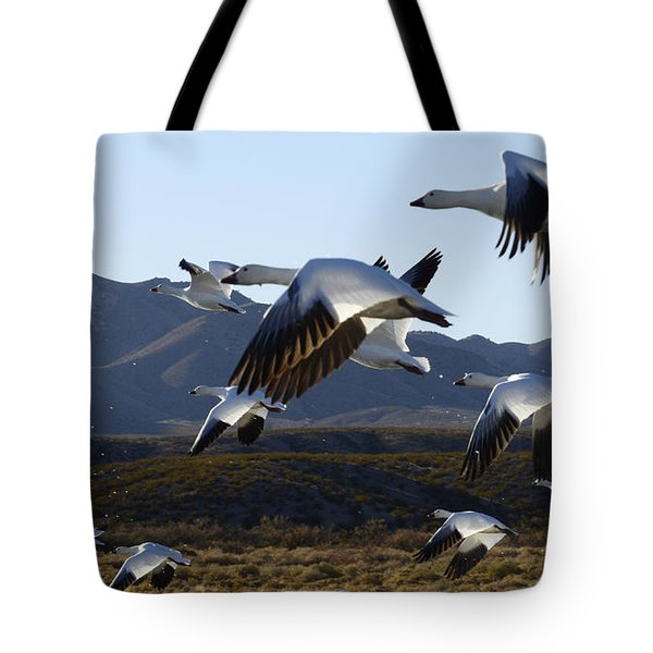 Bosque Del Apache Snow Geese In Flight Tote Bag by Bob Christopher