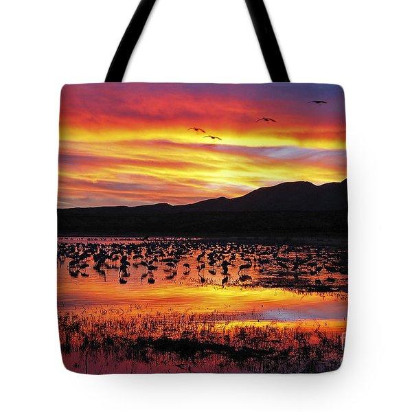 Bosque Sunset II Tote Bag by Steven Ralser
