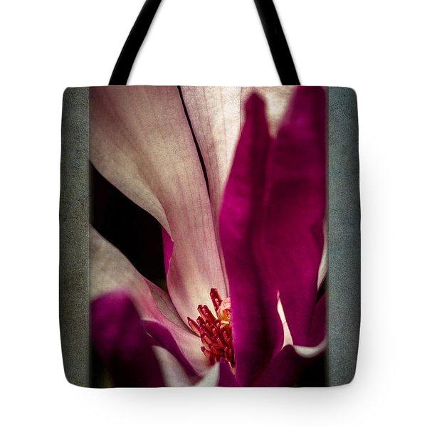 Boston Magnolia Tote Bag by Eduard Moldoveanu