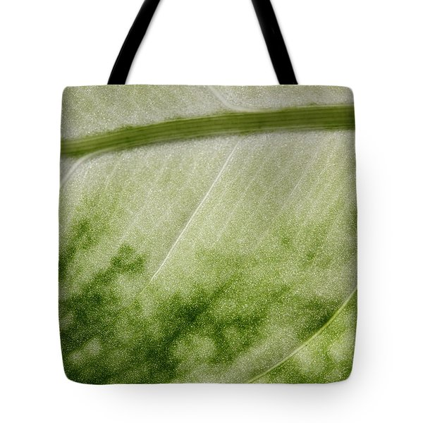 Botanical Freeway Tote Bag