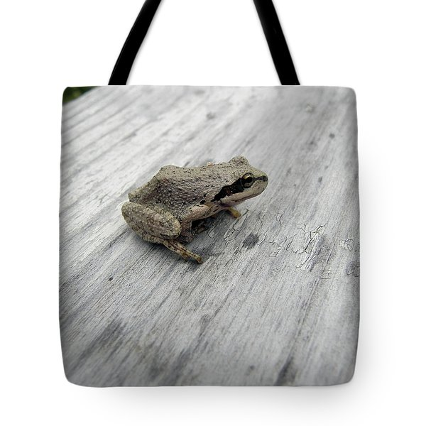 Tote Bag featuring the photograph Botanical Gardens Tree Frog by Cheryl Hoyle