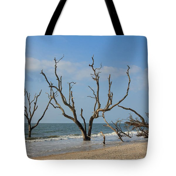 Botany Beach Tote Bag