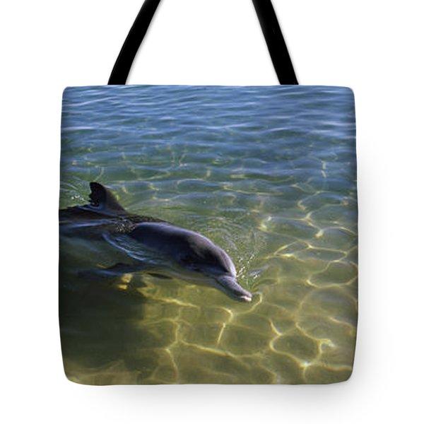 Bottle-nosed Dolphin Tursiops Truncatus Tote Bag